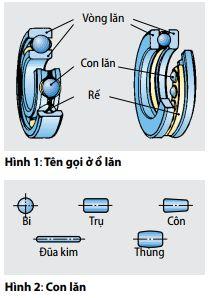 hinh1-hinh22