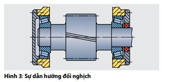 hinh3-su-huongdoi-nghich