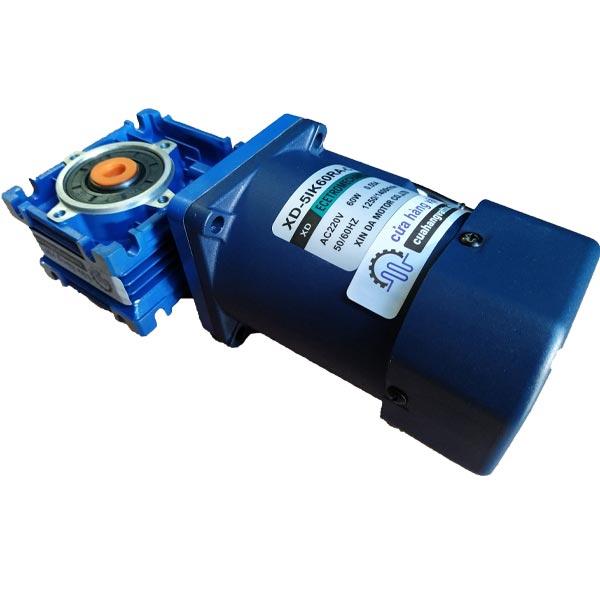 Động cơ giảm tốc 220VAC - 60W (Hộp số trục vít bánh vít)