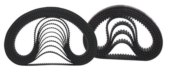 dây đai răng